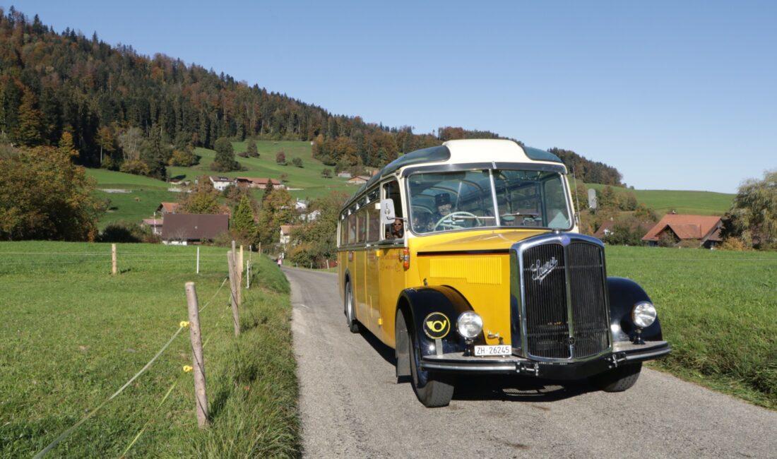 Schnauzenbus im Neuthal